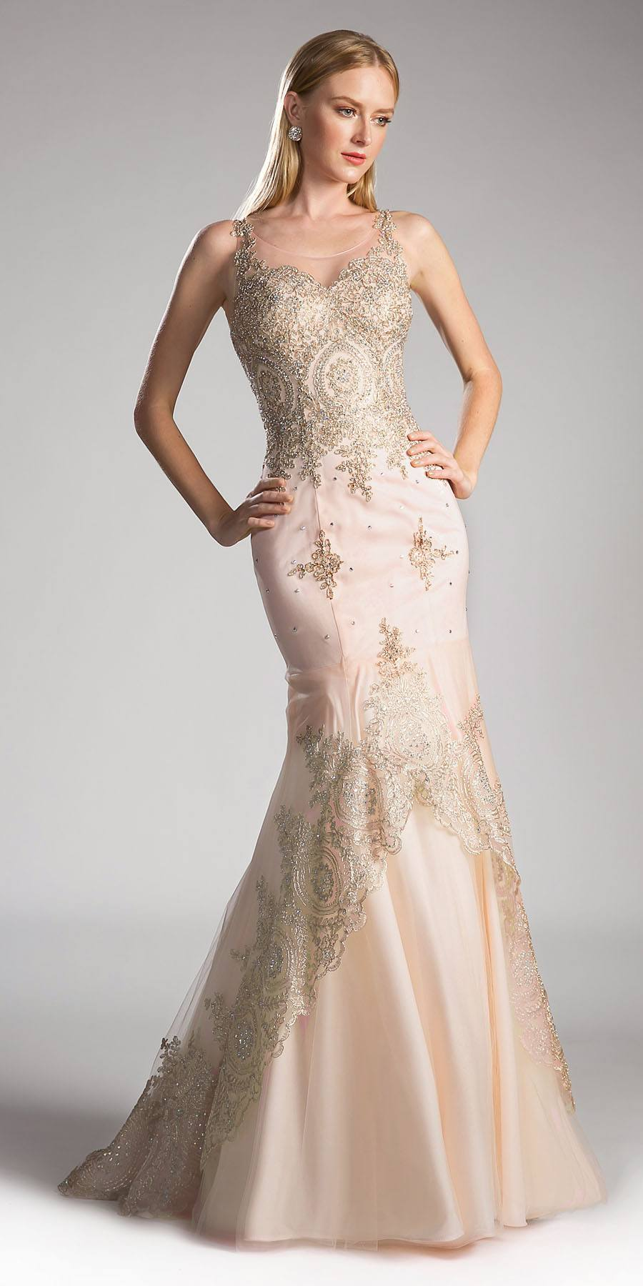 b0f38727888 Champagne Embroidered Long Mermaid Prom Dress Lace Up Back. Tap to expand