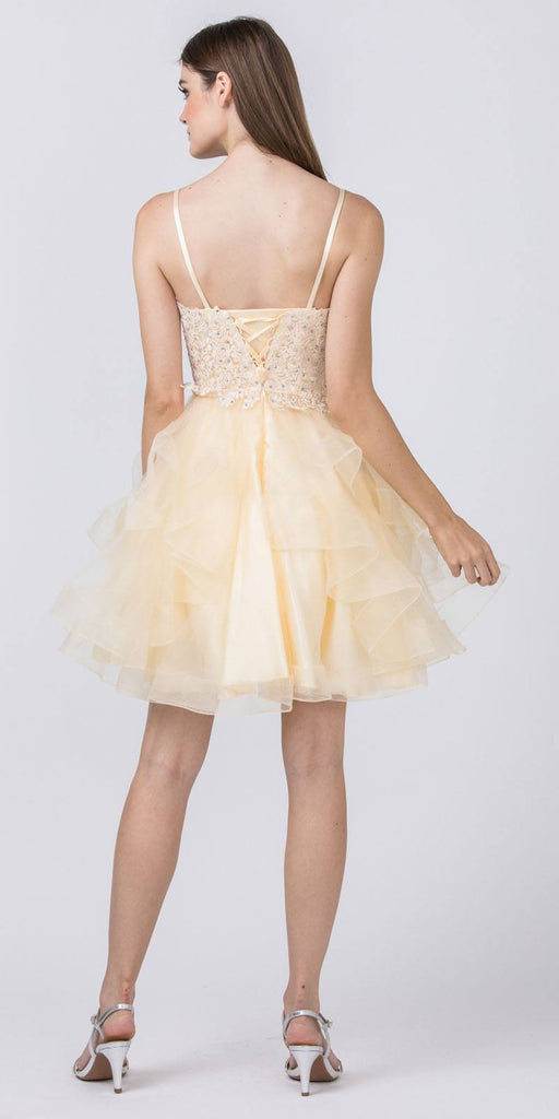 Appliqued Homecoming Short Dress Champagne Tiered Skirt