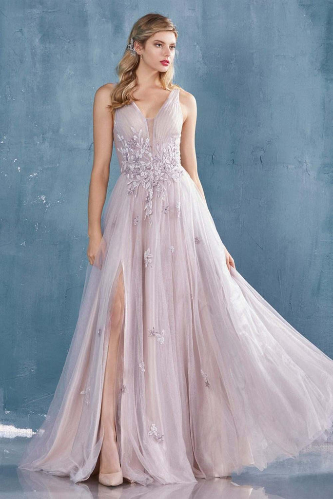 Wisteria V-Neck and Back Long Prom Dress with Appliques