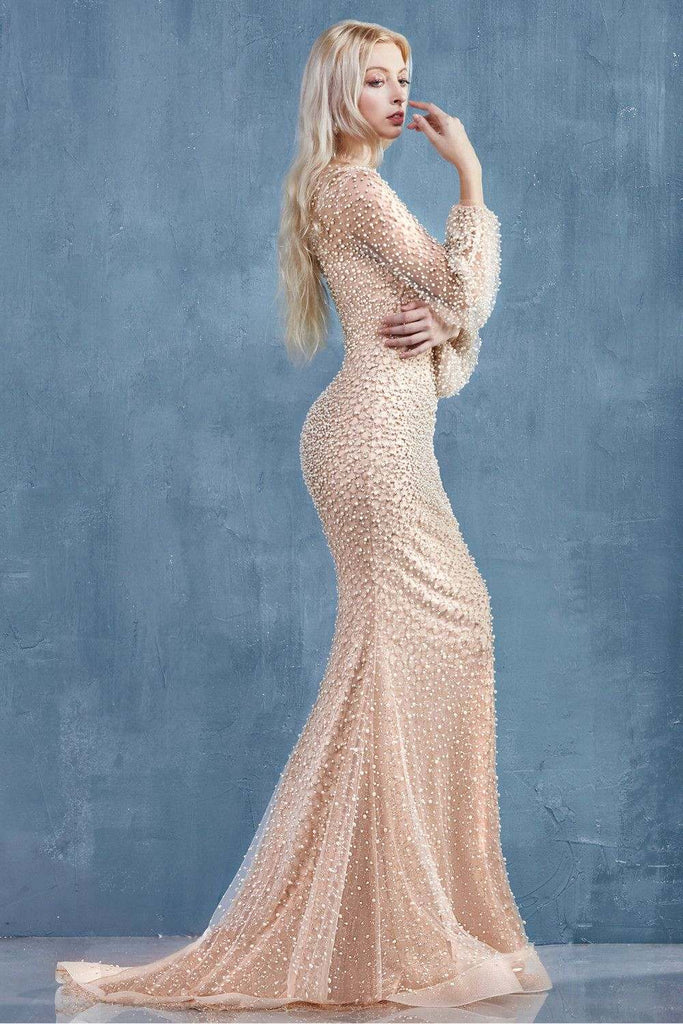 Blush Pearl Beaded Fit and Flare Long Prom Dress