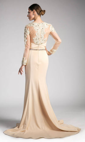Khaki Long Formal Dress Appliqued Bodice Long Sleeves Back View