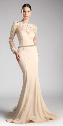 Khaki Long Formal Dress Appliqued Bodice Long Sleeves
