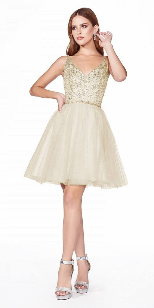 Short Blush A-Line Damas Dress Sleeveless Embellished Top Tulle Skirt