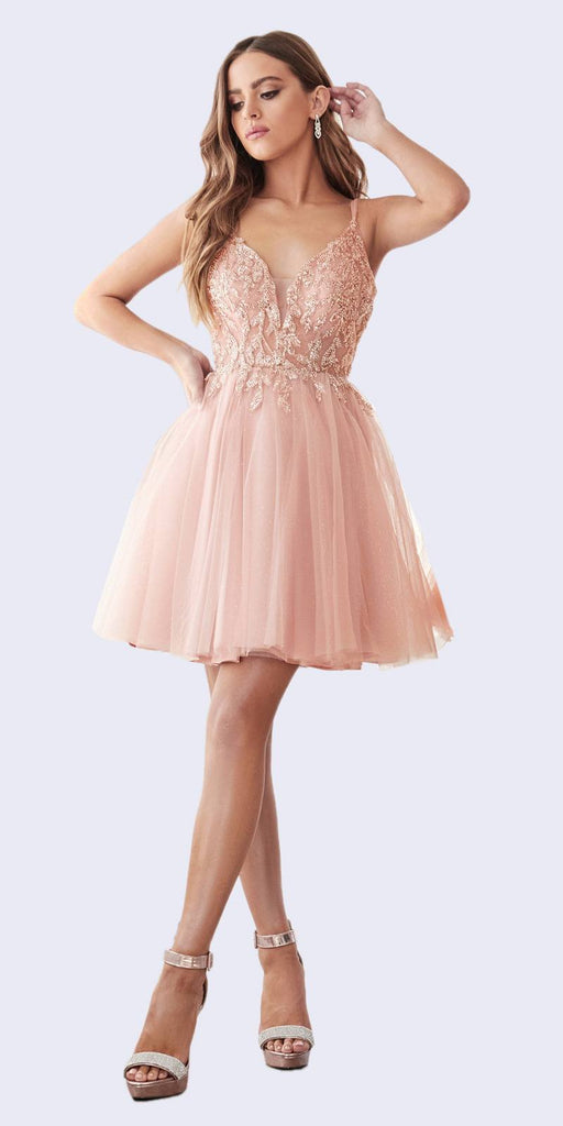 A-Line Short Gown Blush Layered Tulle Skirt Embellished Lace Applique Bodice