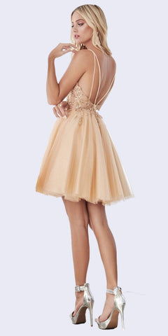 A-Line Short Gown Champagne Layered Tulle Skirt Embellished Lace Applique Bodice