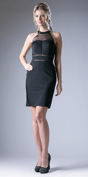 Halter High Neck Short Cocktail Sheath Dress Sheer Back Black