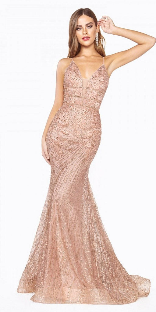 Long Fitted Dress Glitter Lace Rose Gold Applique Criss-Cross Open Back