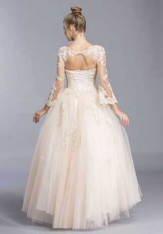 Champagne V-Neck Quinceanera Dress Long Sleeve with Appliques