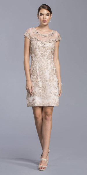 Dusty Rose Short Sleeve Appliqued Formal Short Dress