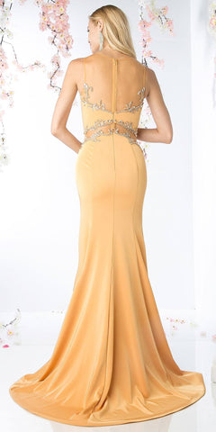 Apricot Long Prom Dress Embellished Sheer-Midriff
