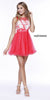 Short Sleeveless Dress Watermelon Illusion Floral Applique Bodice