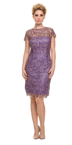 Short Vintage-Like Lace Dress Violet Cap Sleeves