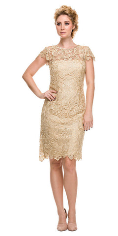 Short Vintage-Like Lace Dress Gold Cap Sleeves
