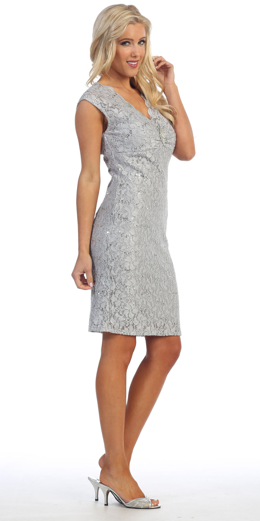 Silver Cocktail Lace Dress Knee Length V Neckline Cap Sleeves