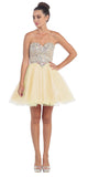 Short Poofy Ball Gown Champagne Strapless Tulle Skirt A Line