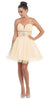 Tulle A Line Skirt Champagne Homecoming Dress Strapless Poofy