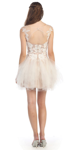 Tutu Mesh Skirt Nude Bodice Ivory Lace Embroidery Dress