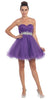 Ruched Bodice Studded Waist Purple Short Poofy Homecoming Dress