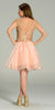 Short Organza A Line Blush Stone Dress V Neck Lace Applique