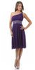 Purple Knee Length Cocktail Dress chiffon One Shoulder Cruise Dress