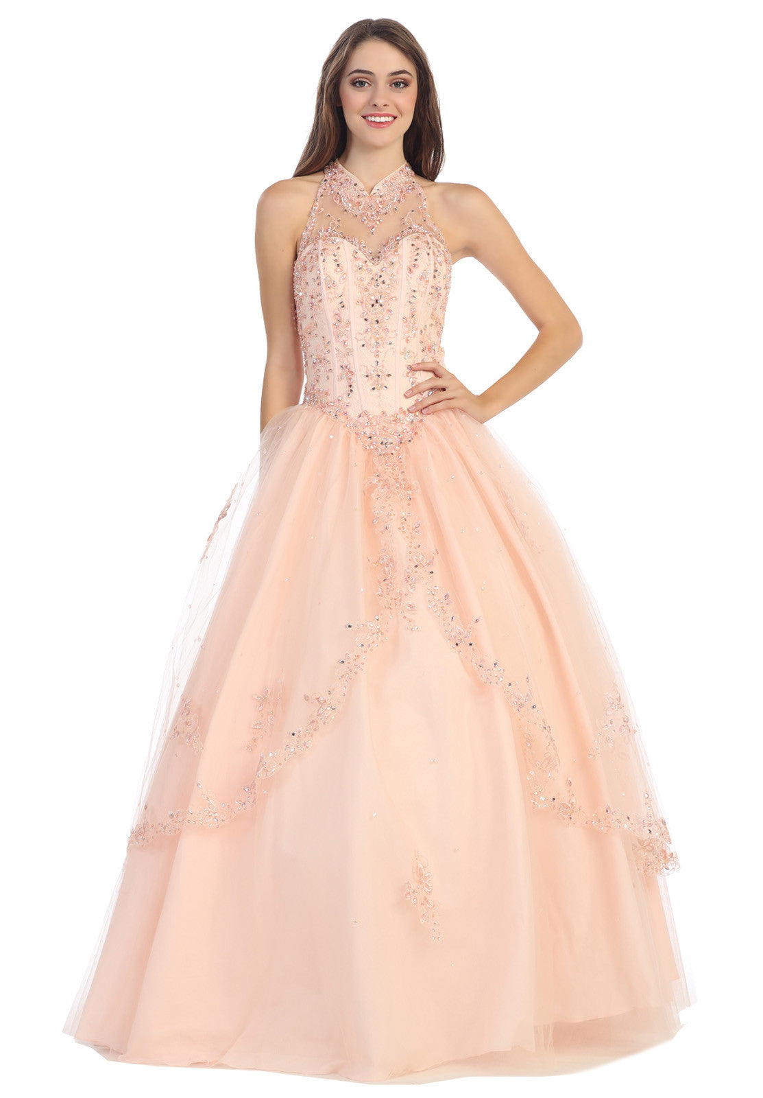 Halter Neck Corset Bodice Blush Princess Gown Poofy