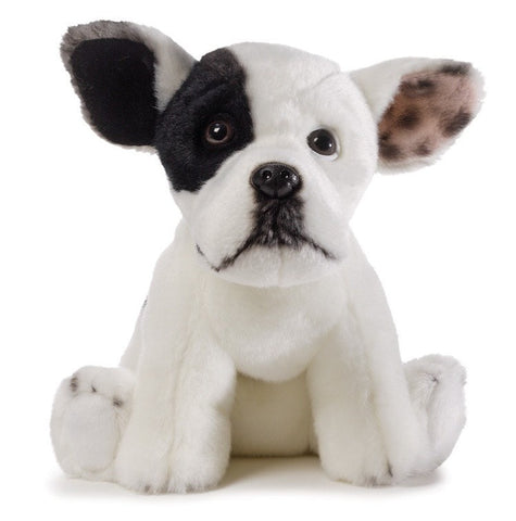 "Jonny Justice Top Dog Winner - 9"" - Gund - Plush Friends"