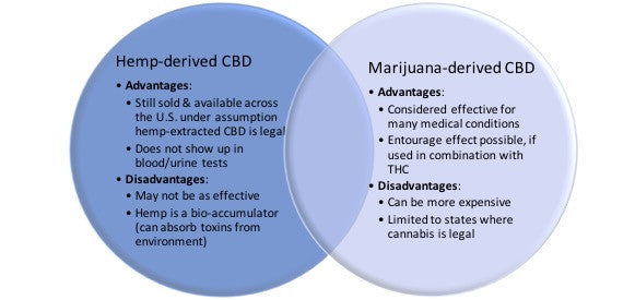 The Who's Who of CBD