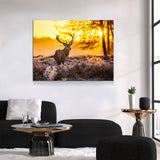 Deer Canvas Wall Art, Big Buck Sunset Hunting Decor - Royal Crown Pro