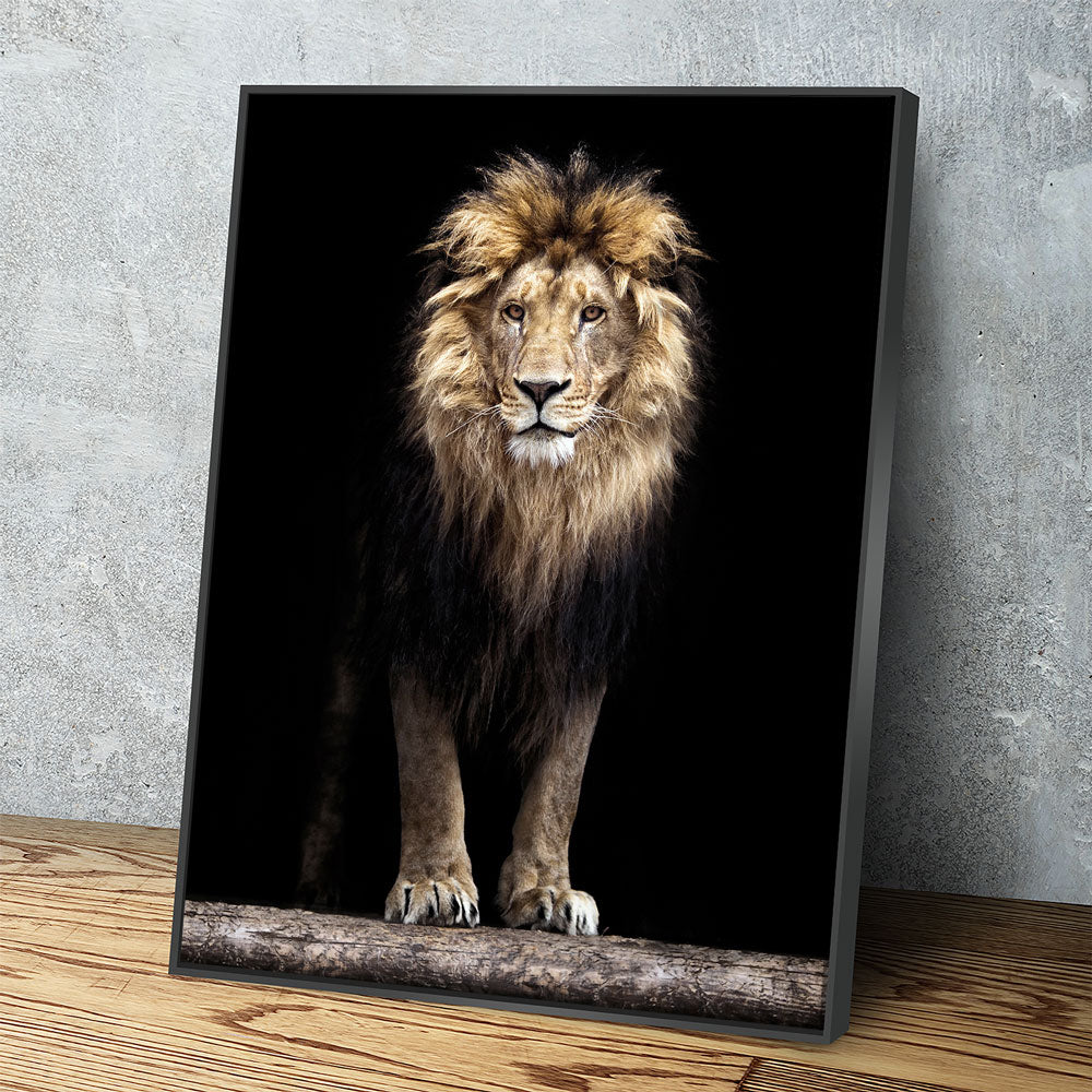 Mighty Lion Canvas Wall Art - African Lion - Royal Crown Pro