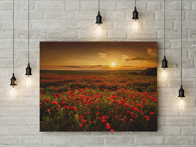 Poppy Flower Poppy Field Canvas Framed Canvas Wall Art Sunset Poppy Fields Art - Royal Crown Pro