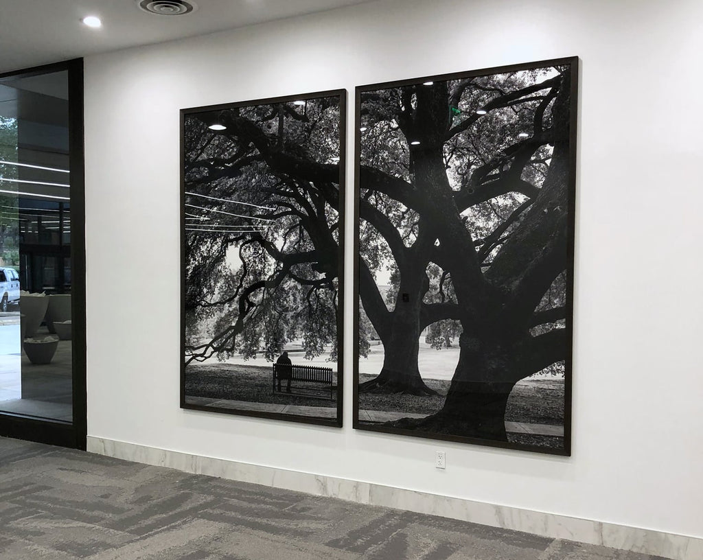 Keith Dotson tree photographs chosen for NCH Corporation headquarters in Texas