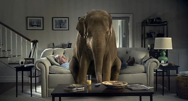 Two Keith Dotson photographs appear on TV in Spiriva's elephant commercial
