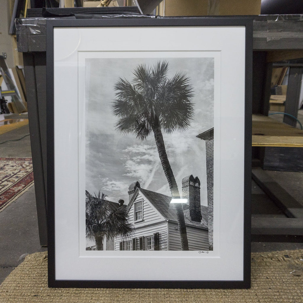 Framed photograph of an iconic Charleston, South Carolina palm tree by Keith Dotson.