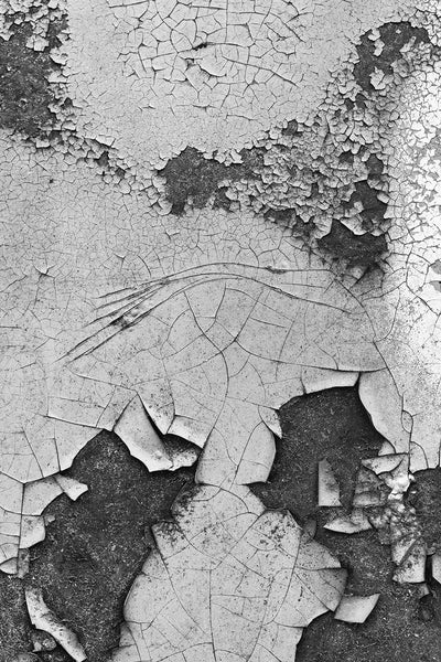 Cracked Car Paint Composition 01, black and white photograph by Keith Dotson. Click to buy a print.