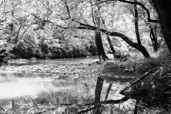 Trees Reflecting on a Calm Creek Black and White Landscape Photograph by Keith Dotson. Click to buy a fine art print.