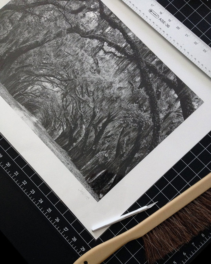 "Recent print of my photograph ""Avenue of the Oaks, Savannah"" on 100-percent cotton paper. The print is seen through a protective plastic sleeve."