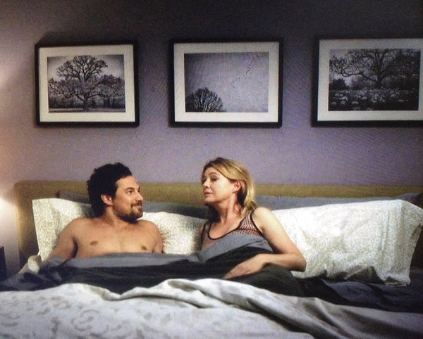 Three Keith Dotson landscape photographs seen on season 15 of Grey's Anatomy. Shown here with actors Giacomo Gianniotti and Ellen Pompeo.