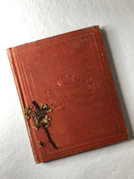 A picture of the tiny bunch of flowers lying on the cover of an old book published in 1870.