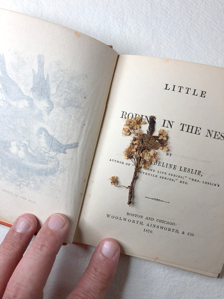 The children's book Little Robins in the Nest by author Madeline Leslie, published 1870.