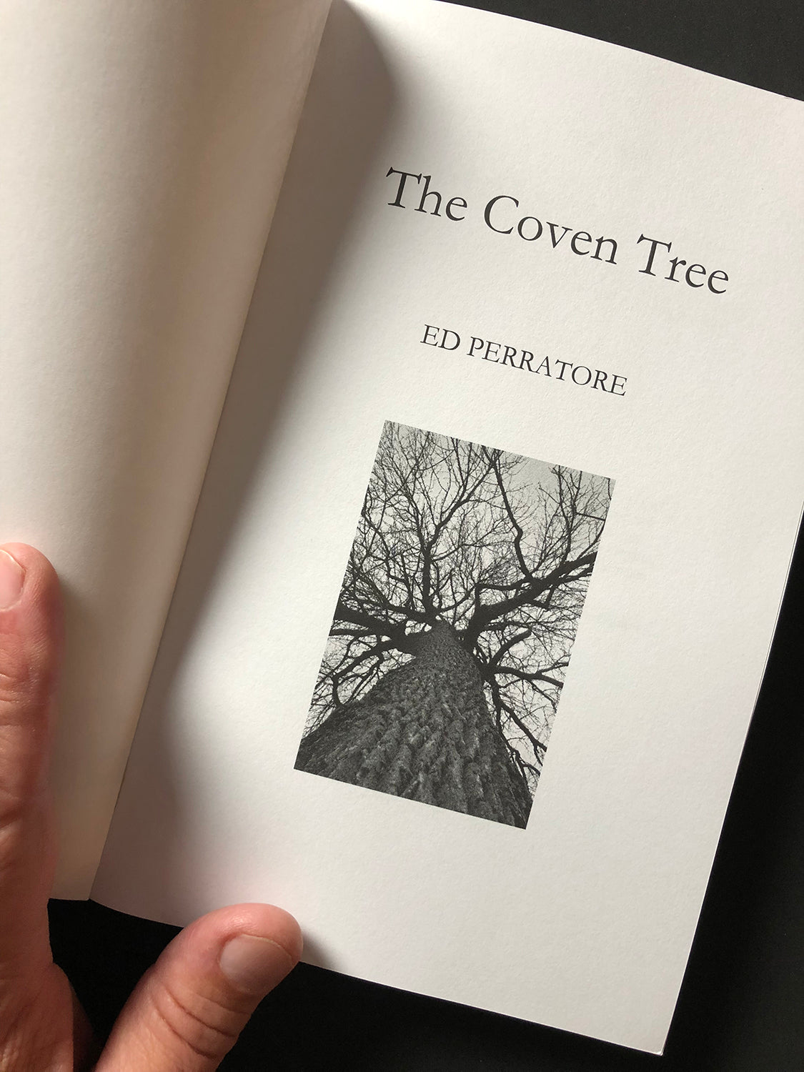 Keith Dotson's photograph of a giant cottonwood tree in winter as seen on the cover page of The Coven Tree written by Ed Perratore.