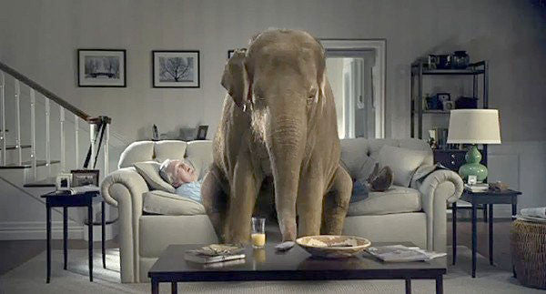 Two photographs by Keith Dotson can be seen on the back wall in this scene from the original 2011 elephant commercial for Spiriva.