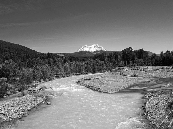 Black and white landscape photograph of the Nisqually River with the massive Mt. Rainier gleaming in the distance.