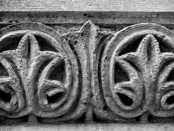 Black and white photograph of a decorative ivy motif carved into the limestone brick of a historic building in Georgetown, Texas.