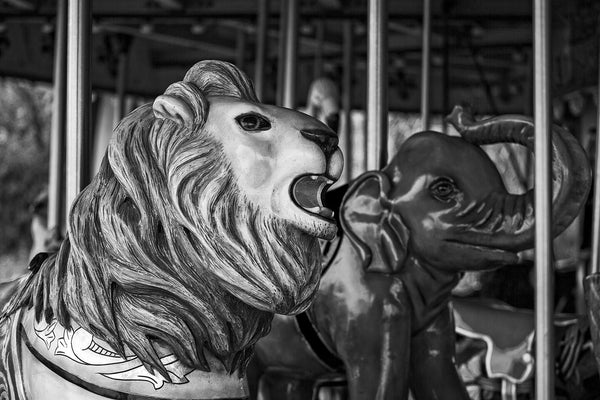 Black and white fine art photograph of a shiny elephant head and lion head on an antique children's carousel.