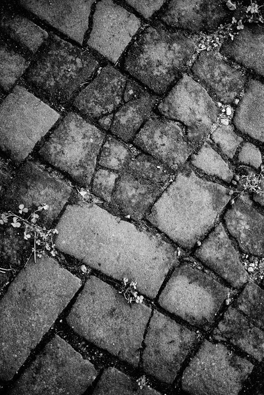 Black and white photograph of a beautiful cobblestone sidewalk near the brewery in in St. Louis, Missouri.