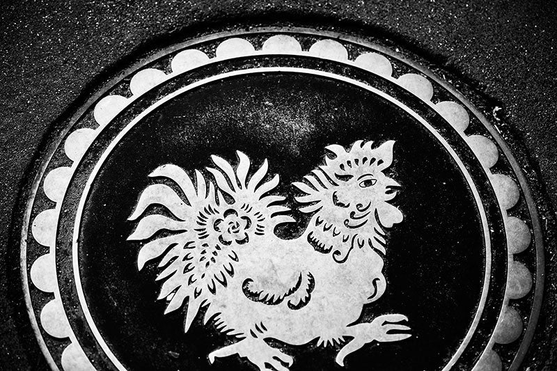 Black and white photograph of a metallic rooster marker embedded in the sidewalk in Philadelphia's Chinatown.