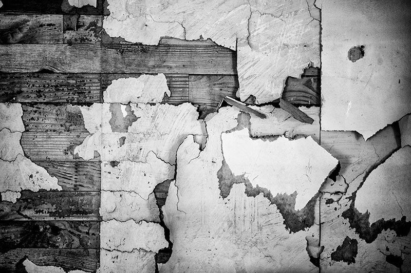 Black and white photograph of wallpaper scraps on the walls inside the home of the late blues musician Sleepy John Estes in Brownsville, Tennessee.