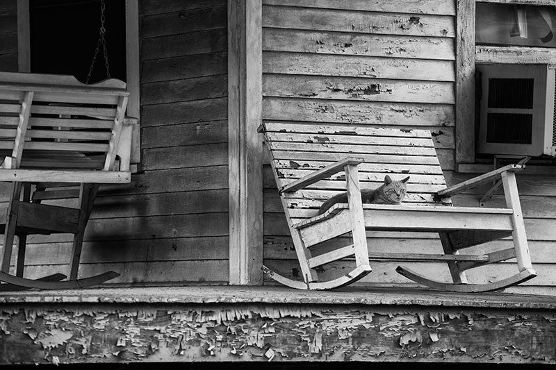 Black and white photograph of a lazy cat lying on a rocking chair on the porch an old house in Lafayette, Louisiana.