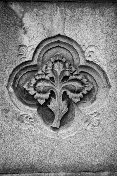 Black and white architectural detail photograph of leaf decoration embedded into a wall in Nashville, Tennessee.