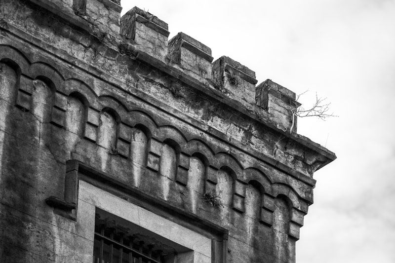 Black and white photograph of a small tree growing from the castle-like roofline of the old Charleston County Jail, built in 1802 and in service until 1939.